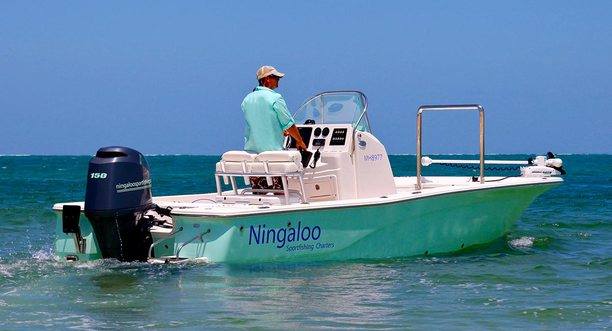Ultimate sport fishing charters yeppoon for Sport fishing charters